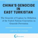 China's genocide in East Turkistan