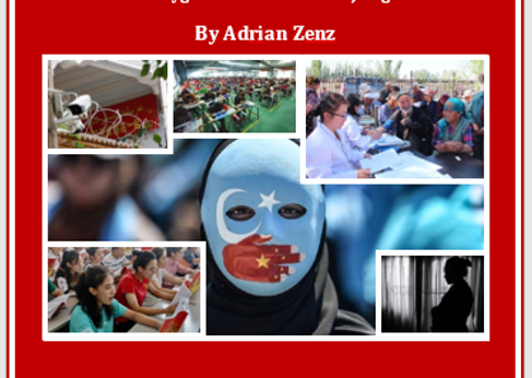 Zenz-Report-Cover-June-2020-1